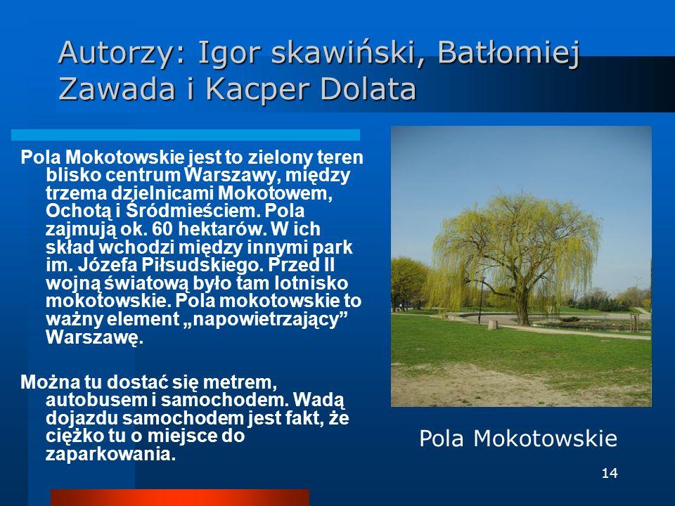 Autorzy: Igor skawiński, Batłomiej Zawada i Kacper Dolata