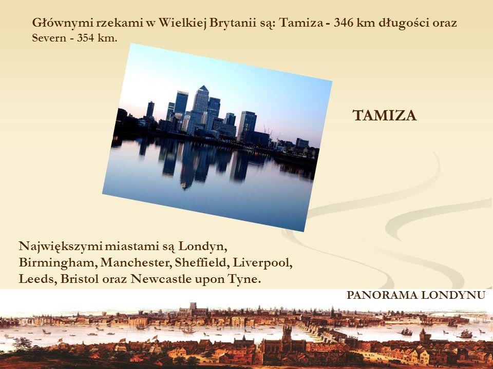 Głównymi rzekami w Wielkiej Brytanii są: Tamiza - 346 km długości oraz Severn - 354 km.
