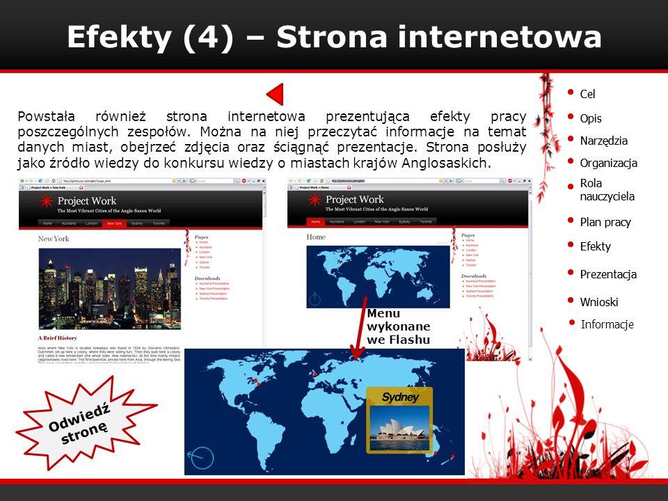 Efekty (4) – Strona internetowa