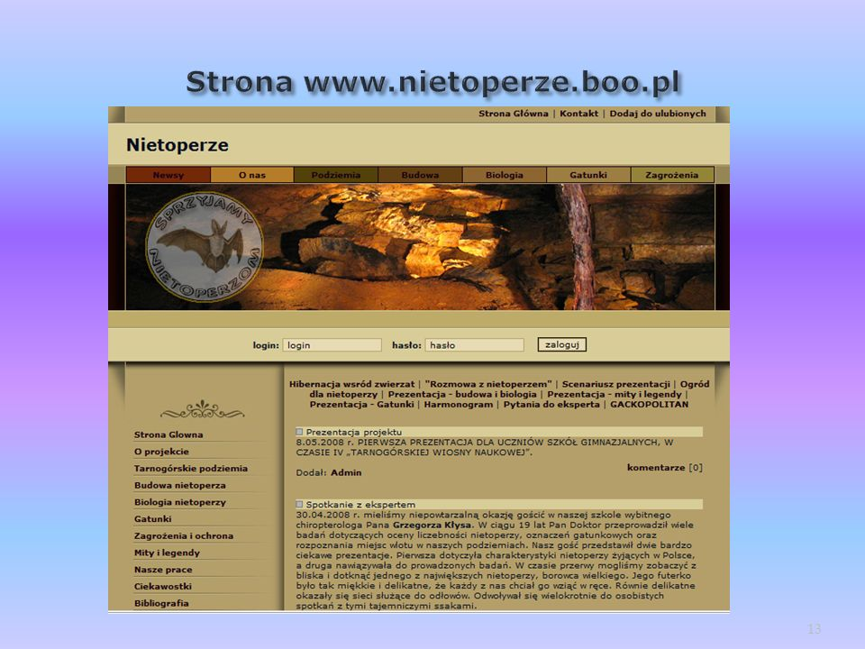 Strona www.nietoperze.boo.pl