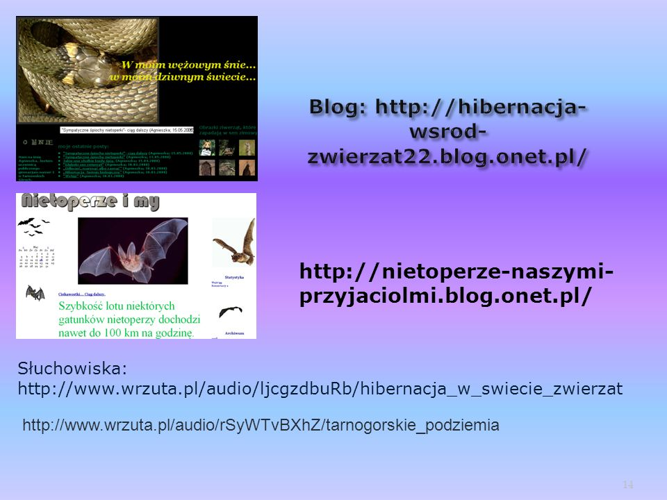 Blog: http://hibernacja-wsrod-zwierzat22.blog.onet.pl/