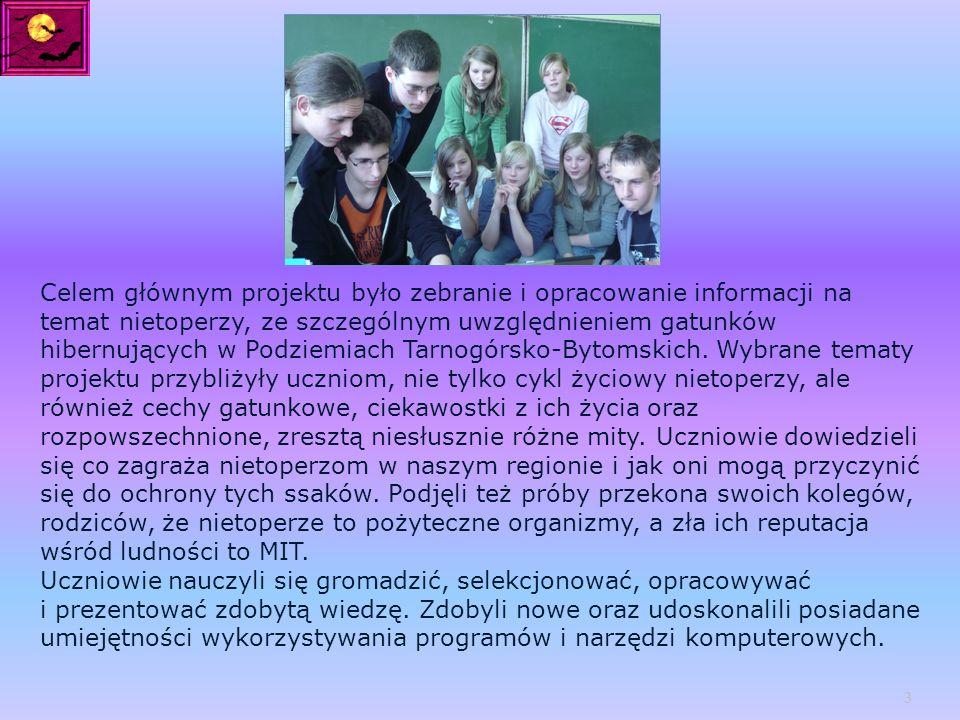 Celem głównym projektu było zebranie i opracowanie informacji na temat nietoperzy, ze szczególnym uwzględnieniem gatunków hibernujących w Podziemiach Tarnogórsko-Bytomskich.