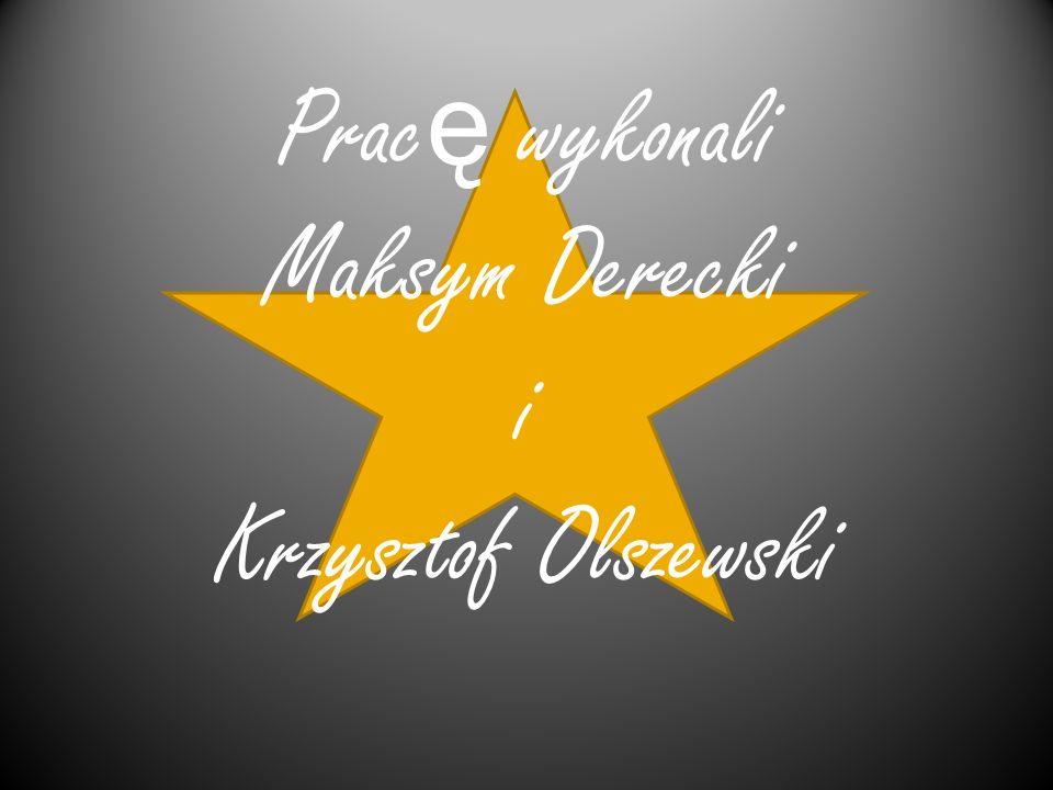 Pracę wykonali Maksym Derecki i Krzysztof Olszewski