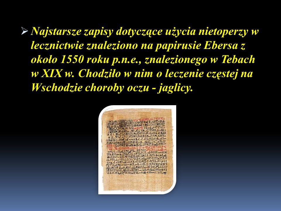 Najstarsze zapisy dotyczące użycia nietoperzy w lecznictwie znaleziono na papirusie Ebersa z około 1550 roku p.n.e., znalezionego w Tebach w XIX w.