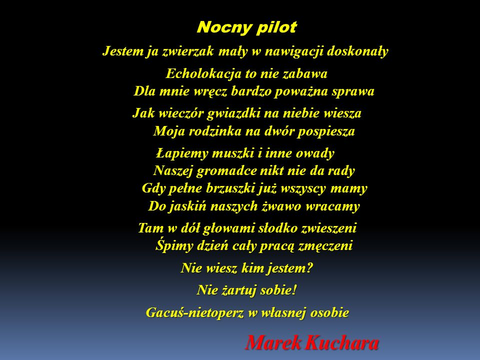 Marek Kuchara Nocny pilot