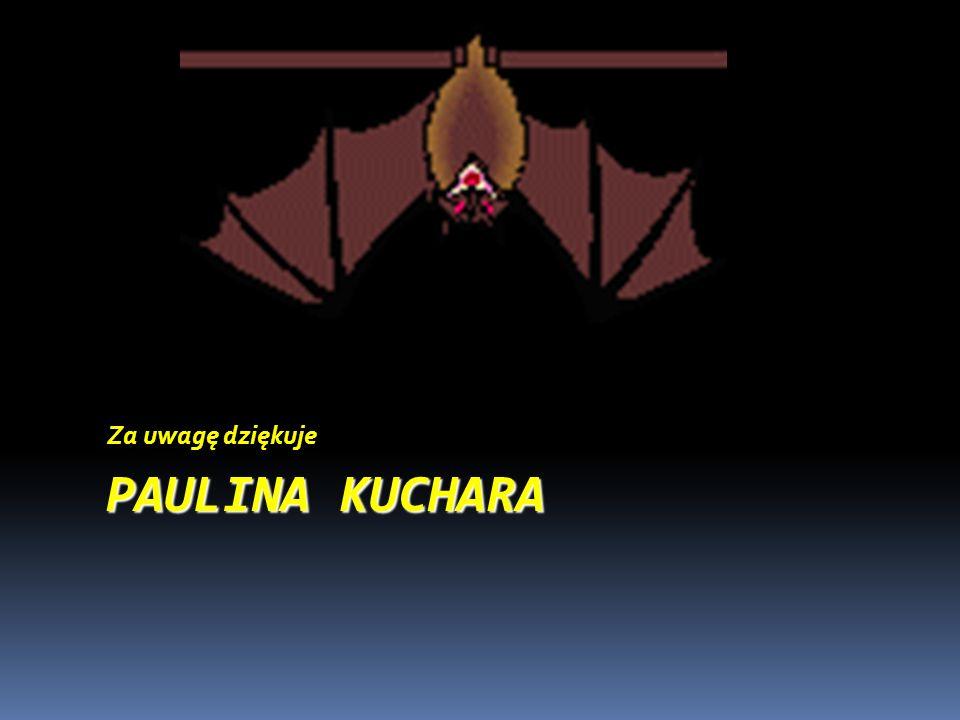 Za uwagę dziękuje PAULINA KUCHARA