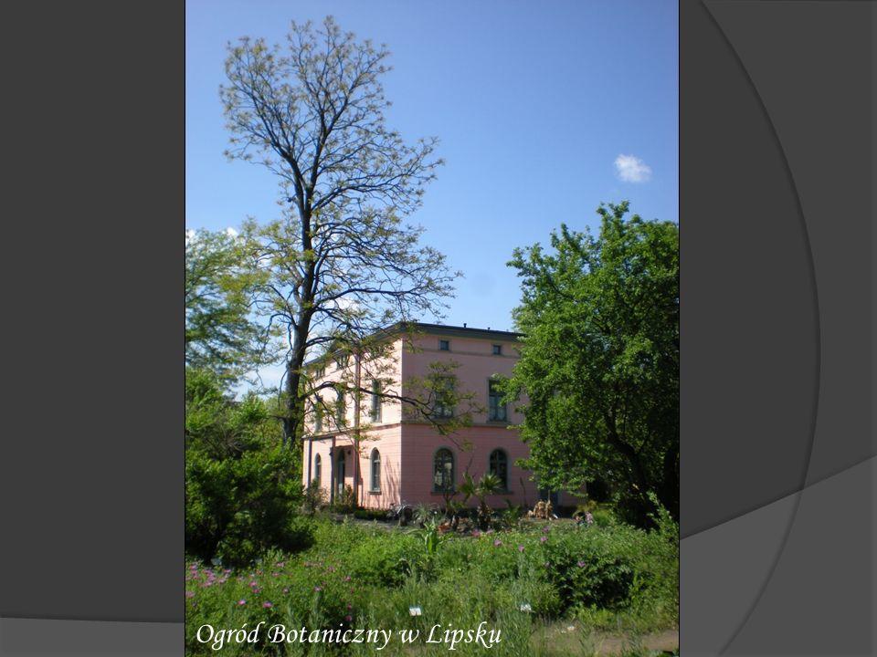 Ogród Botaniczny w Lipsku