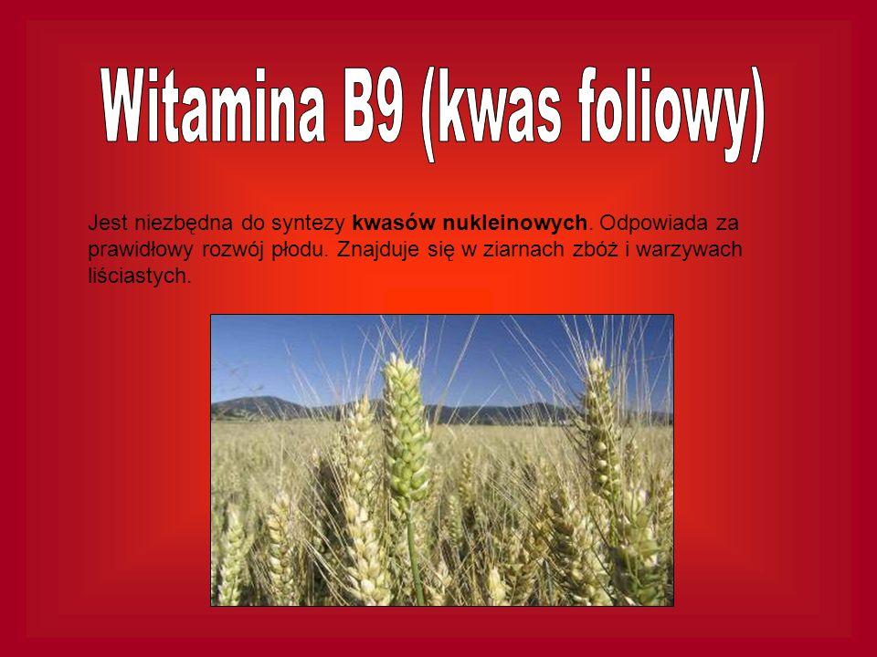 Witamina B9 (kwas foliowy)