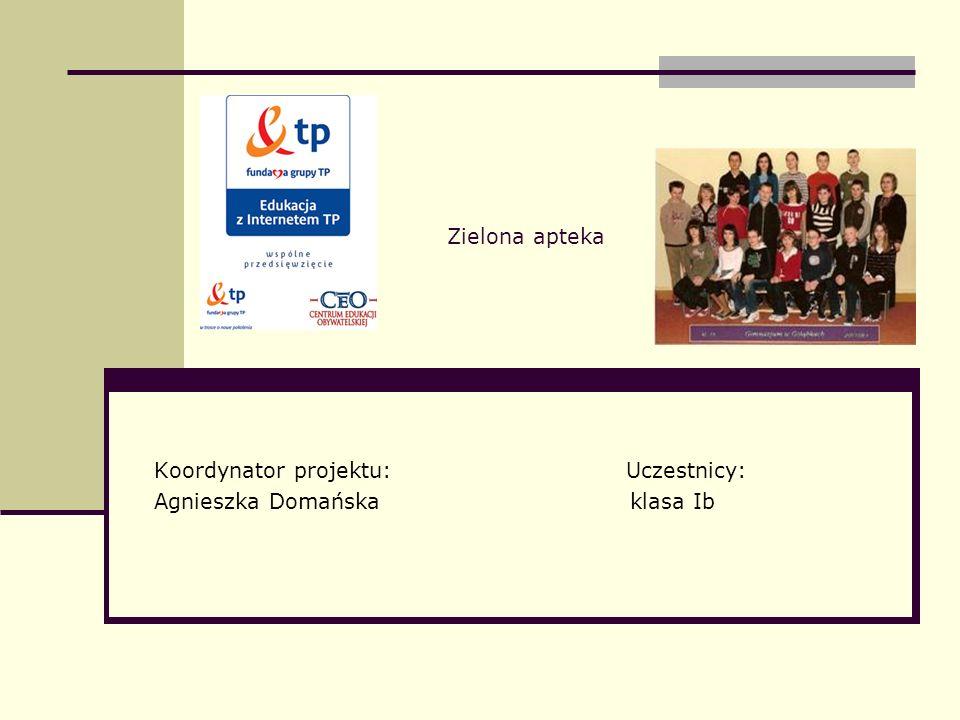 Koordynator projektu: Uczestnicy: Agnieszka Domańska klasa Ib