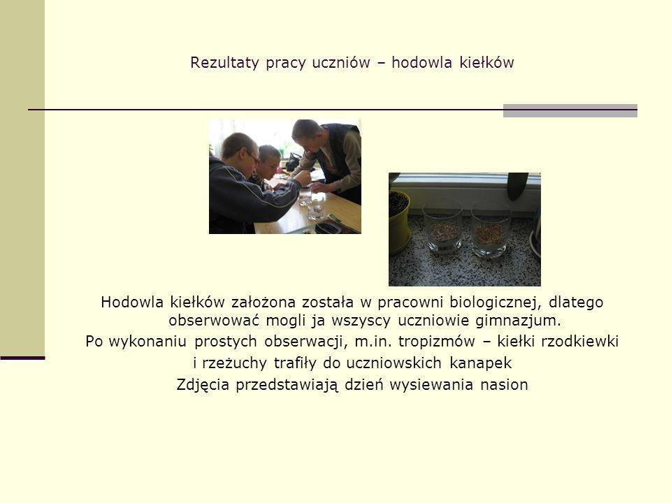 Rezultaty pracy uczniów – hodowla kiełków