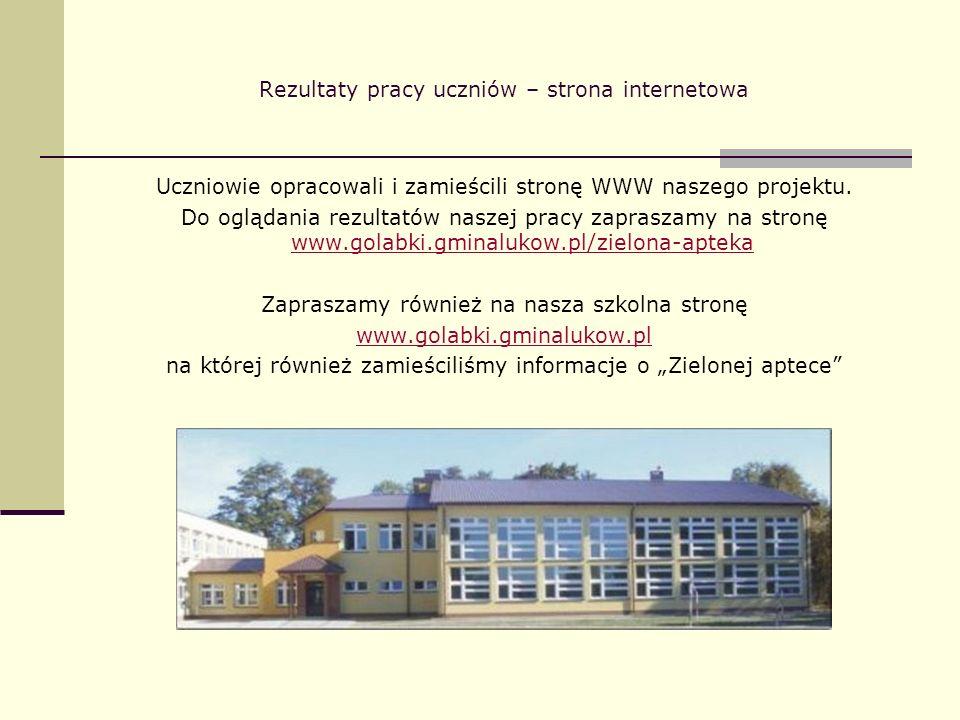Rezultaty pracy uczniów – strona internetowa