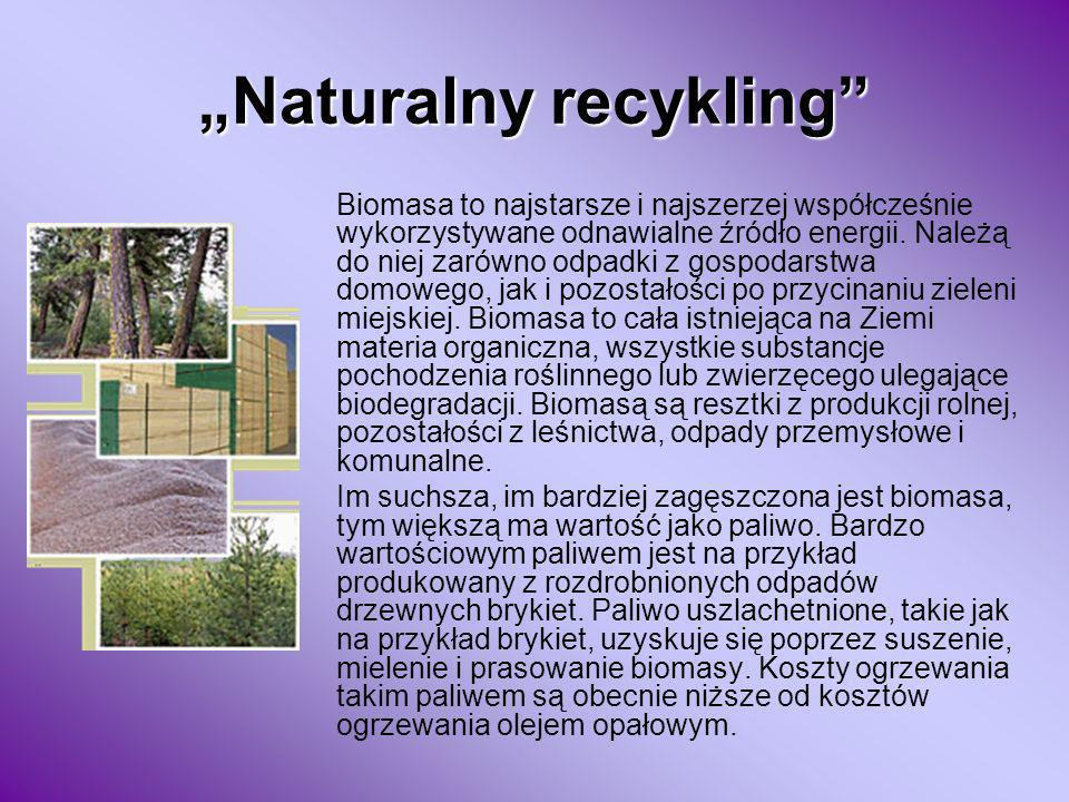 """Naturalny recykling"