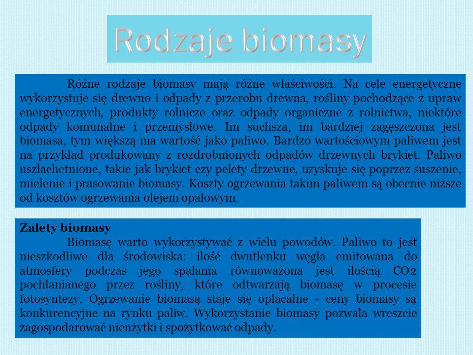 Rodzaje biomasy