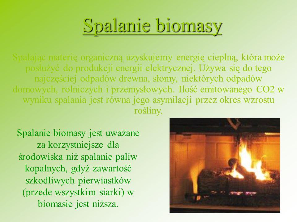 Spalanie biomasy