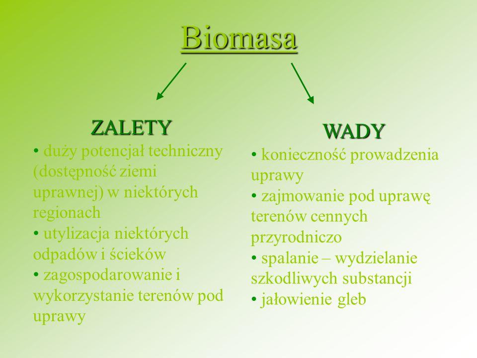 Biomasa ZALETY. duży potencjał techniczny (dostępność ziemi uprawnej) w niektórych regionach. utylizacja niektórych odpadów i ścieków.