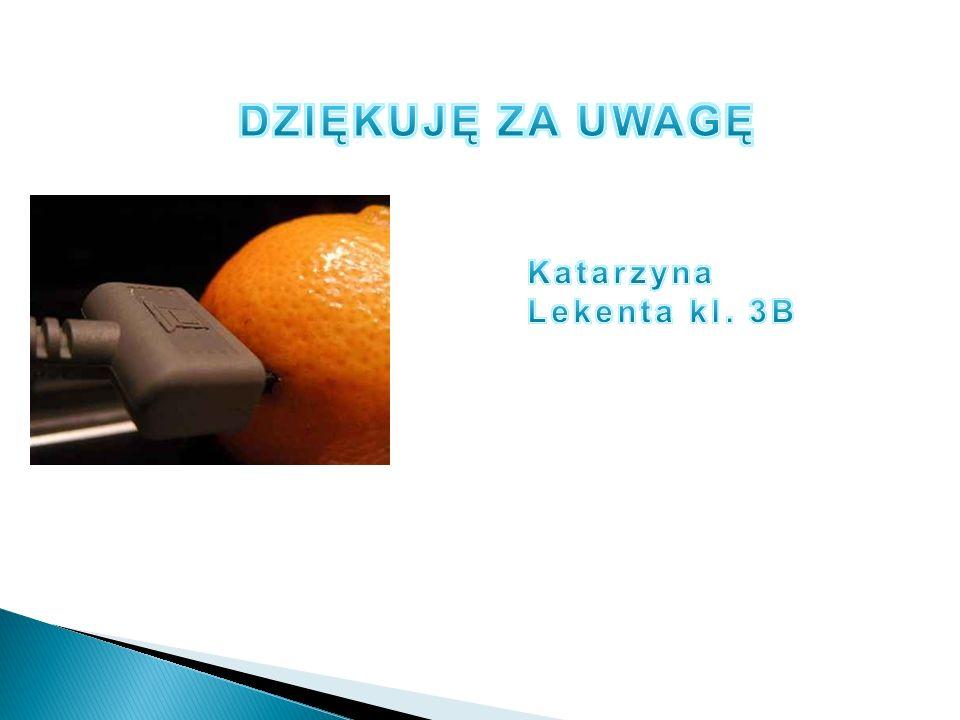 DZIĘKUJĘ ZA UWAGĘ Katarzyna Lekenta kl. 3B