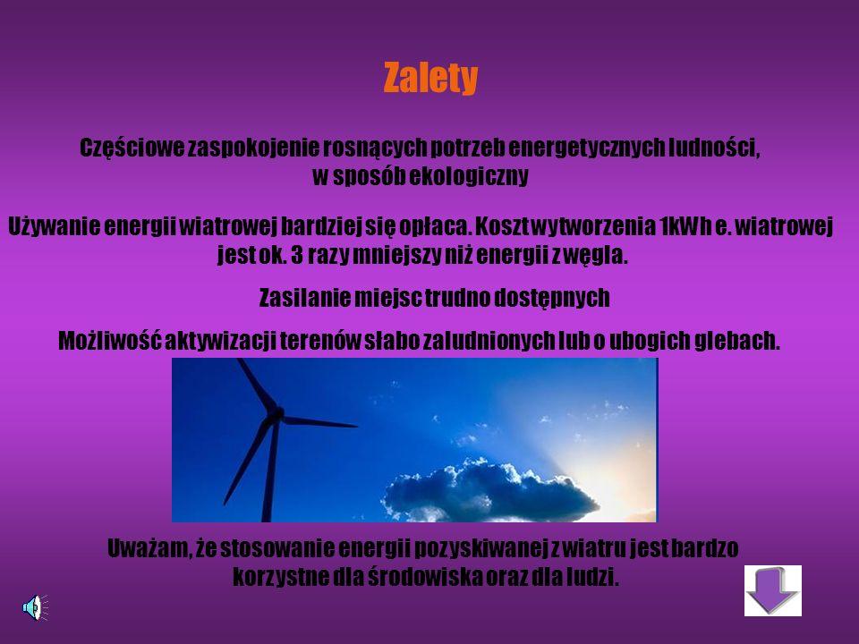 Zalety Częściowe zaspokojenie rosnących potrzeb energetycznych ludności, w sposób ekologiczny.