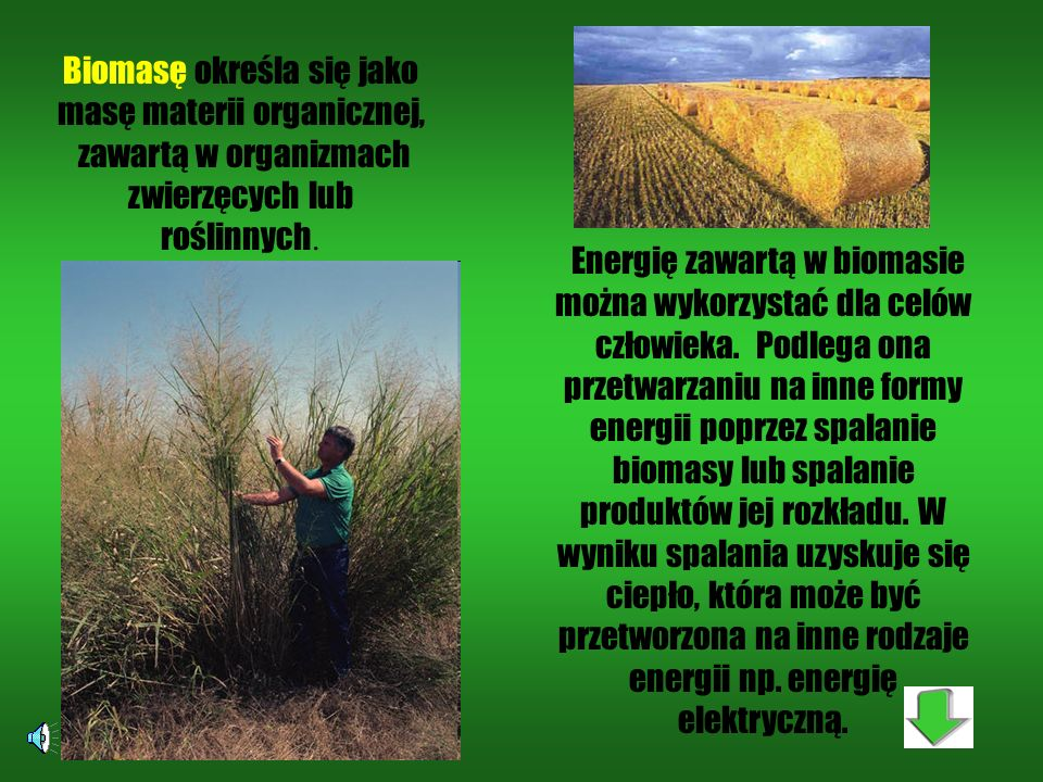 Biomasę określa się jako masę materii organicznej,