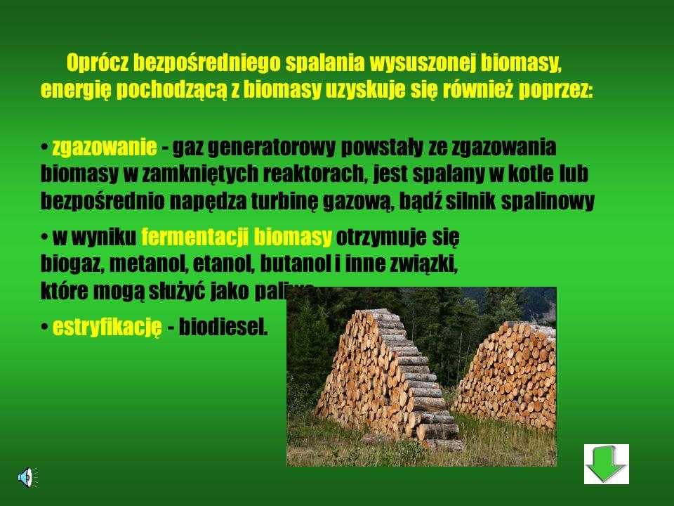 Oprócz bezpośredniego spalania wysuszonej biomasy,