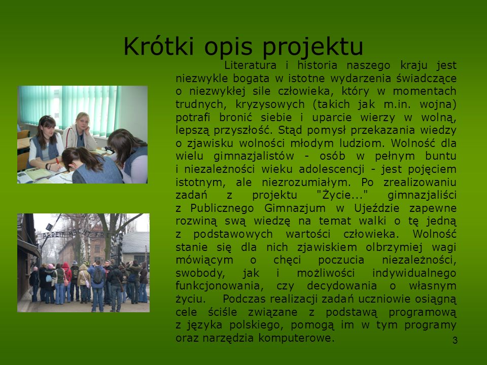 Krótki opis projektu