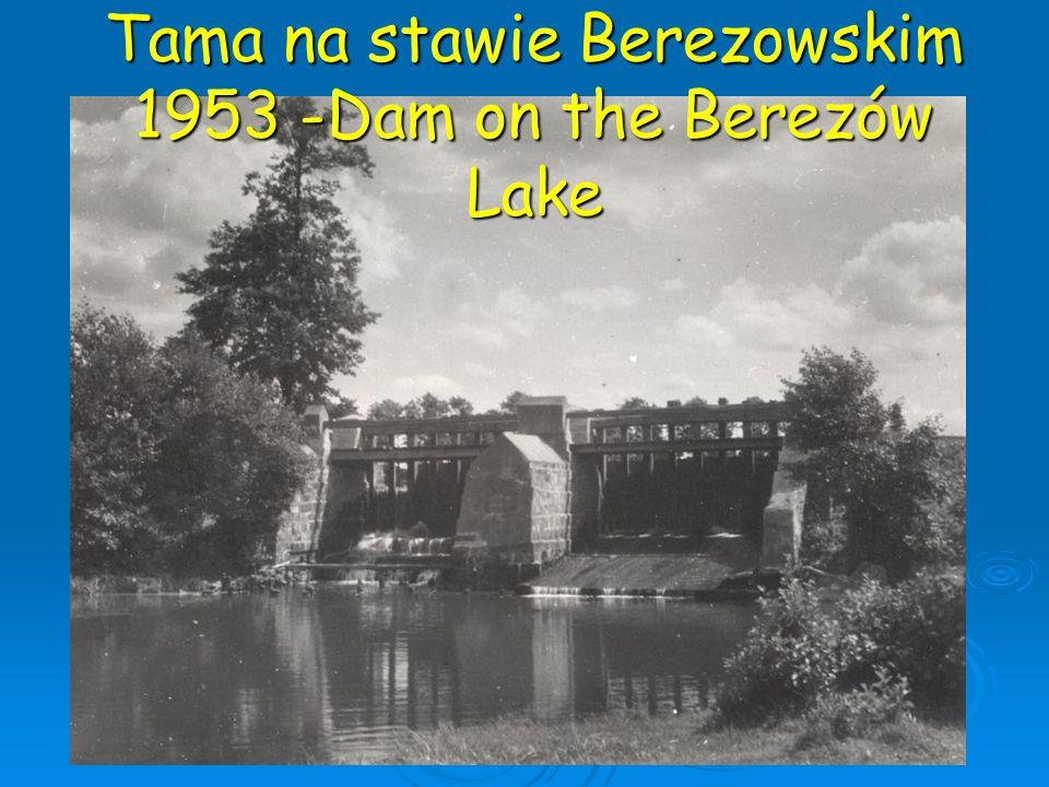 Tama na stawie Berezowskim 1953 -Dam on the Berezów Lake
