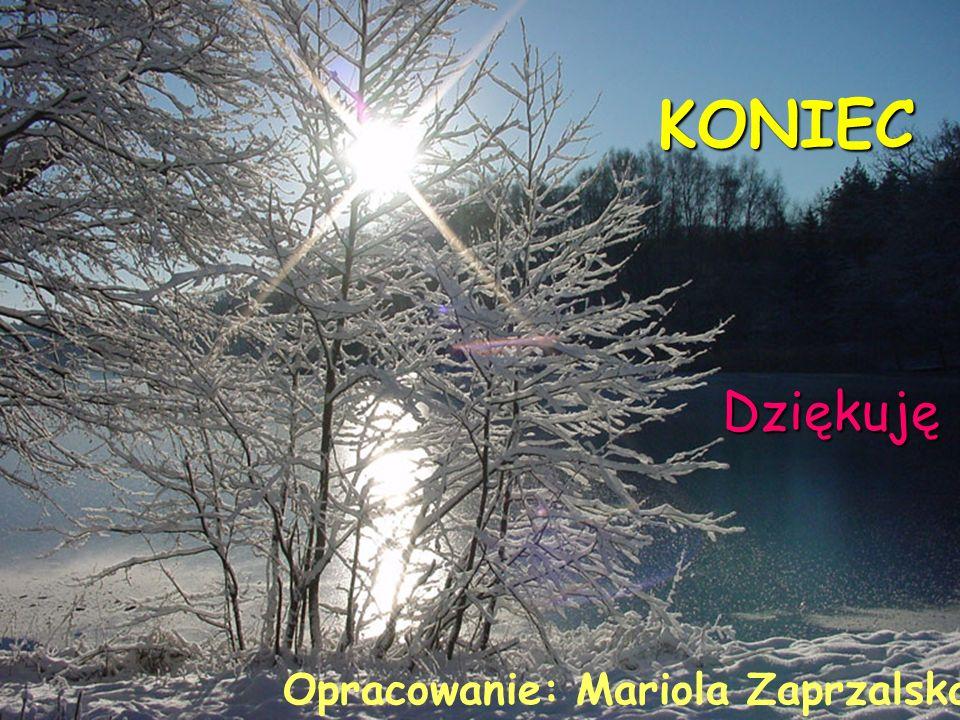 KONIEC Dziękuję Opracowanie: Mariola Zaprzalska