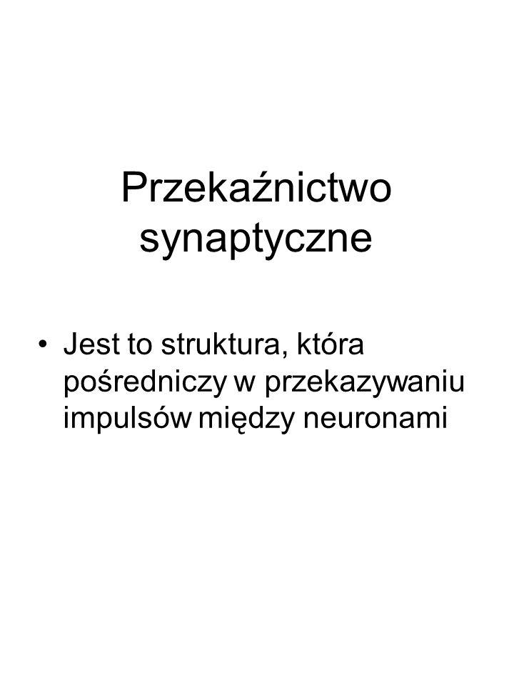 Przekaźnictwo synaptyczne