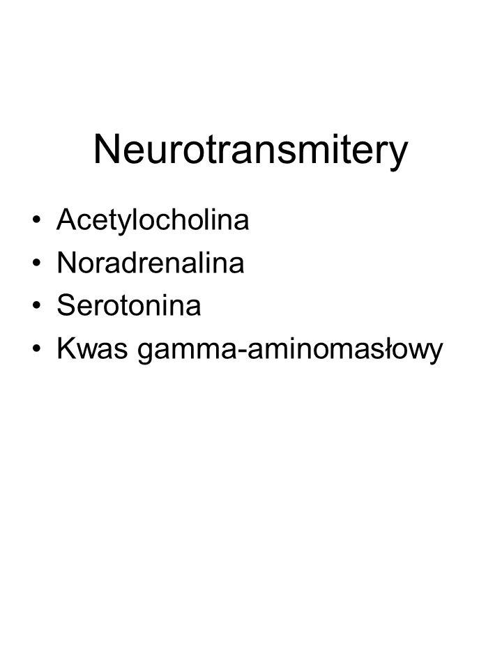 Neurotransmitery Acetylocholina Noradrenalina Serotonina