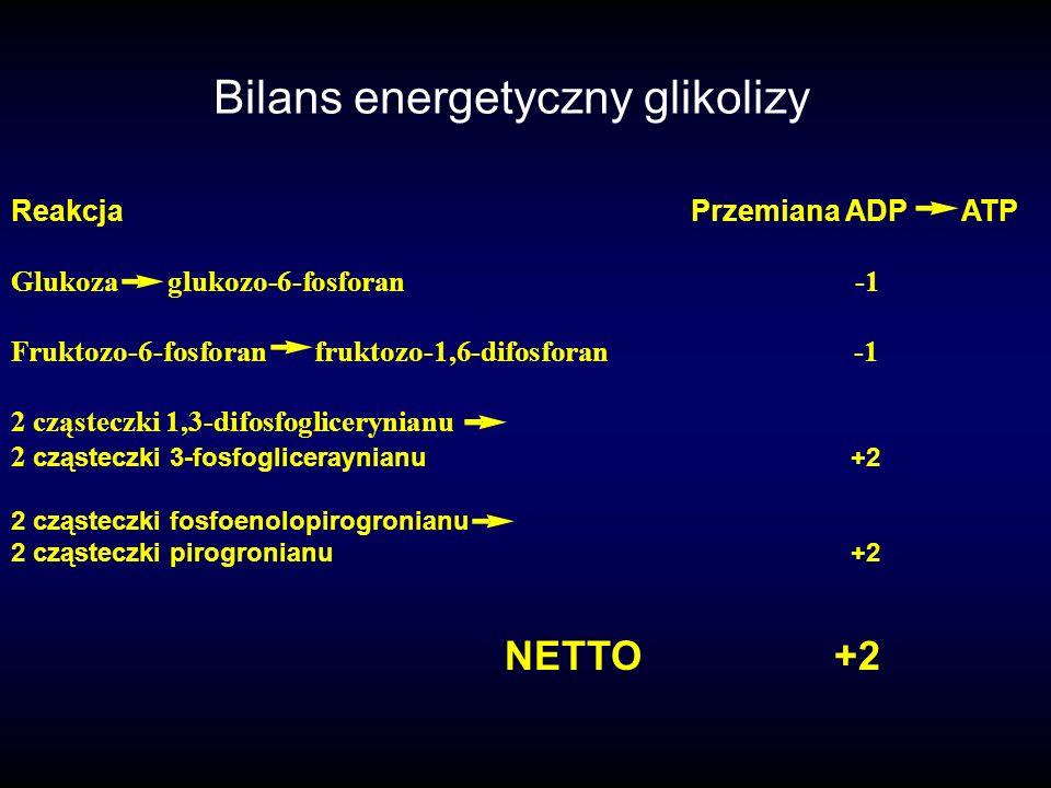 Bilans energetyczny glikolizy