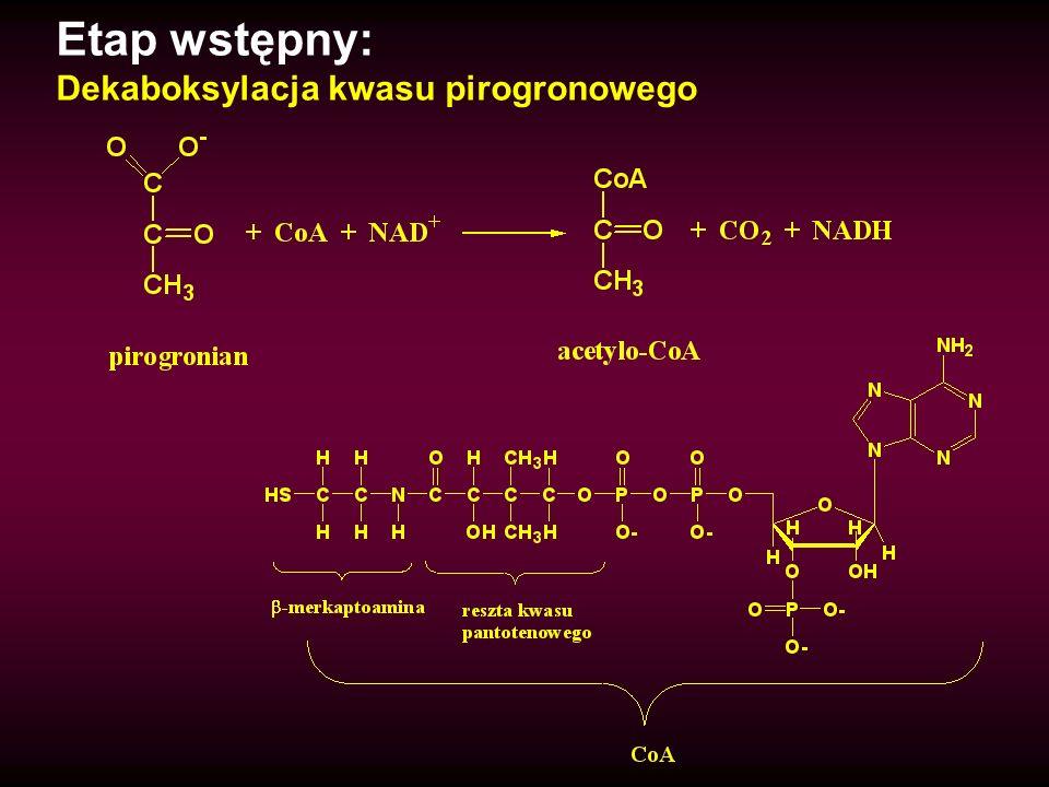 Etap wstępny: Dekaboksylacja kwasu pirogronowego