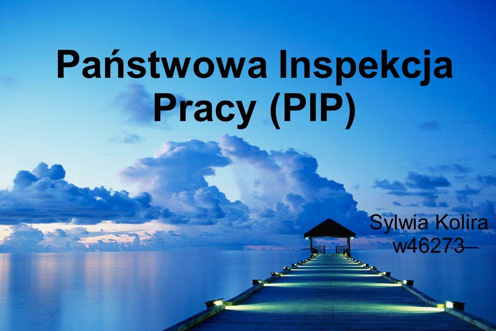 Państwowa Inspekcja Pracy (PIP)