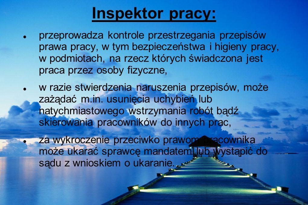 Inspektor pracy:
