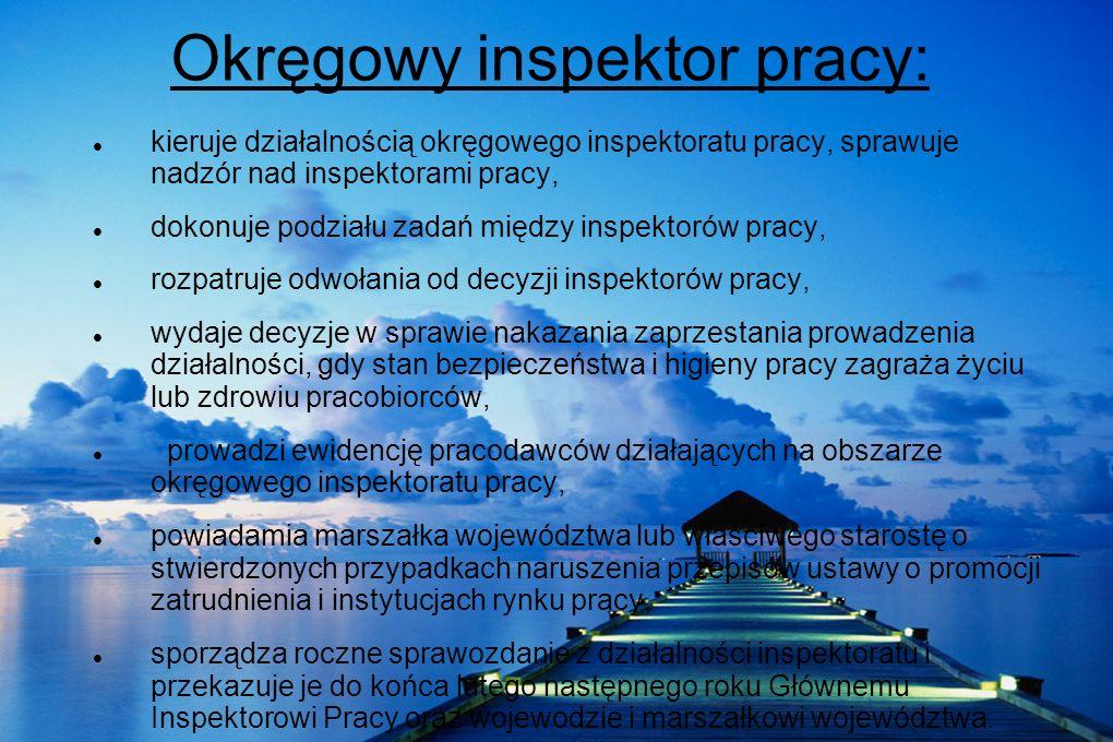 Okręgowy inspektor pracy: