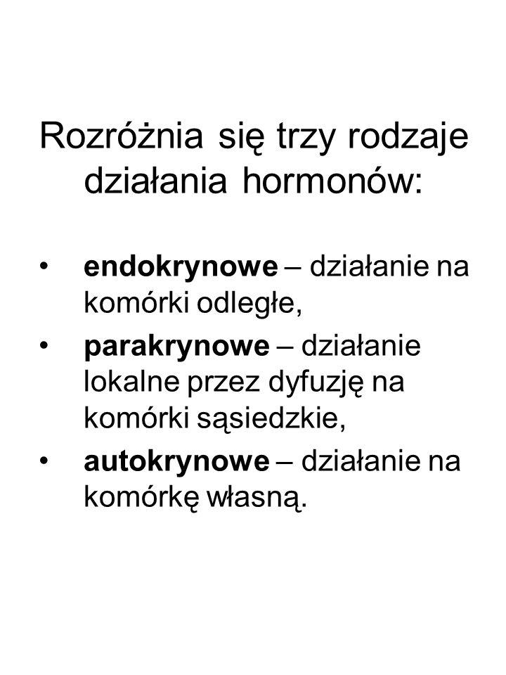 Rozróżnia się trzy rodzaje działania hormonów: