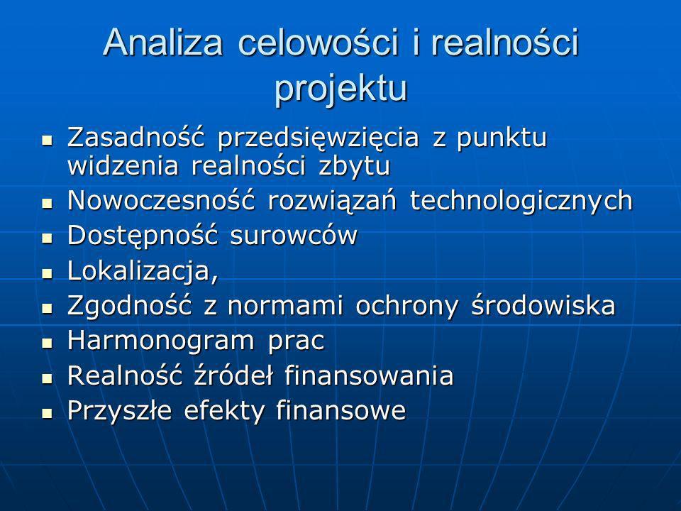 Analiza celowości i realności projektu