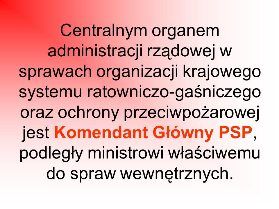 Centralnym organem administracji rządowej w sprawach organizacji krajowego systemu ratowniczo-gaśniczego oraz ochrony przeciwpożarowej jest Komendant Główny PSP, podległy ministrowi właściwemu do spraw wewnętrznych.