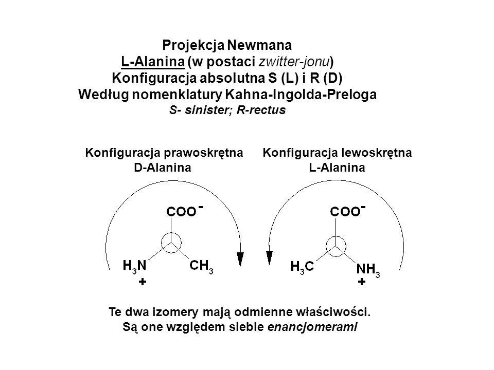 L-Alanina (w postaci zwitter-jonu)