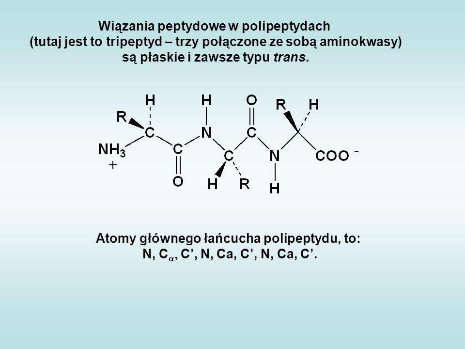 Wiązania peptydowe w polipeptydach