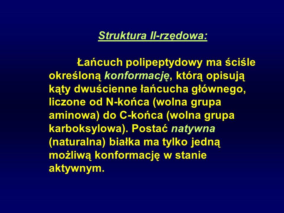 Struktura II-rzędowa:
