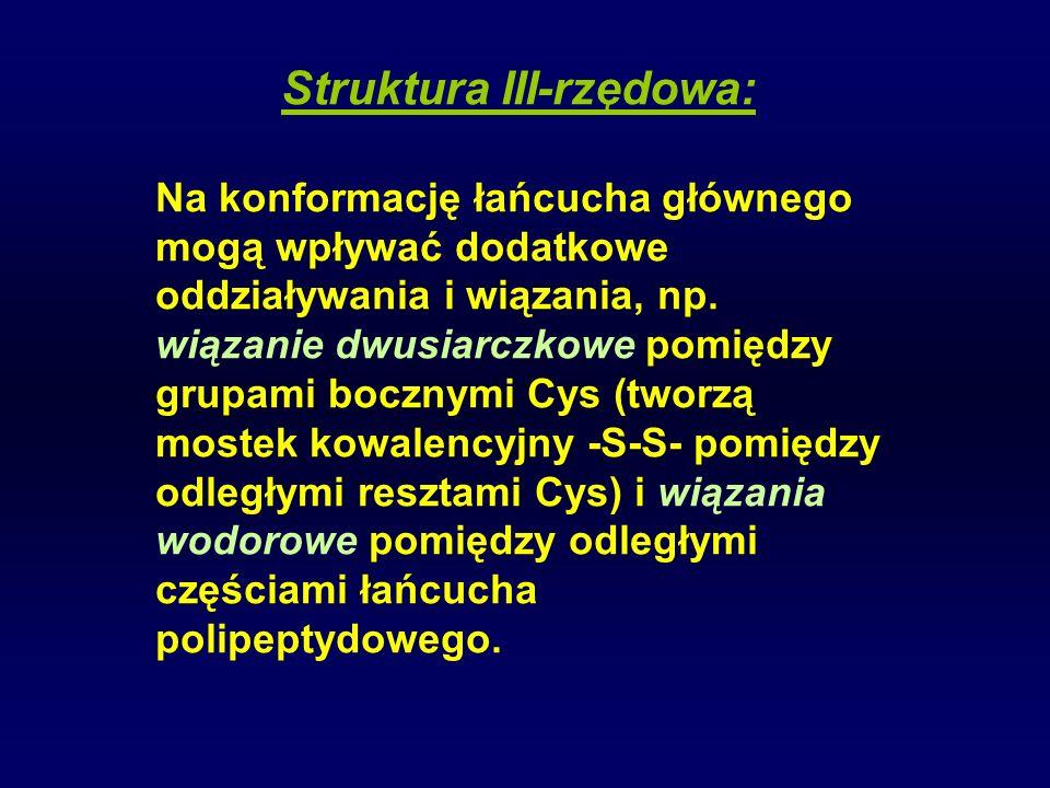 Struktura III-rzędowa: