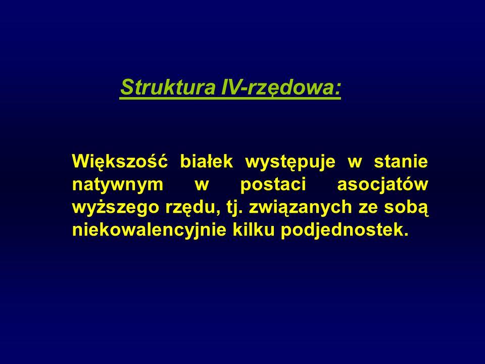 Struktura IV-rzędowa: