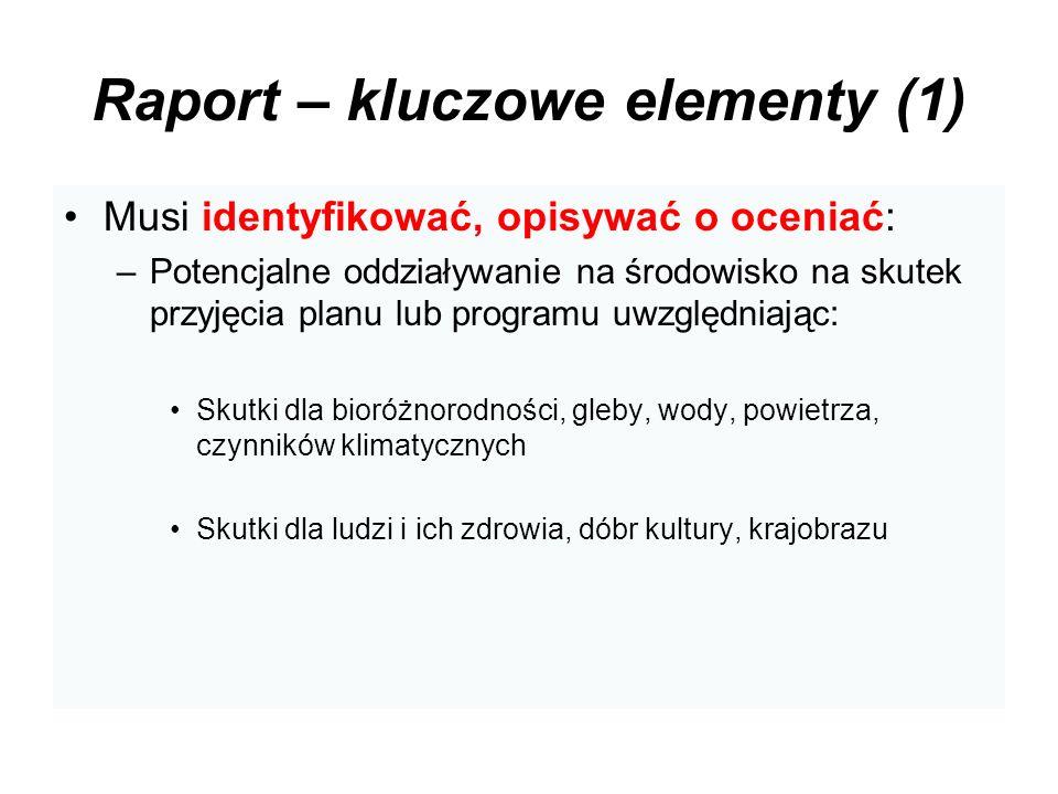 Raport – kluczowe elementy (1)