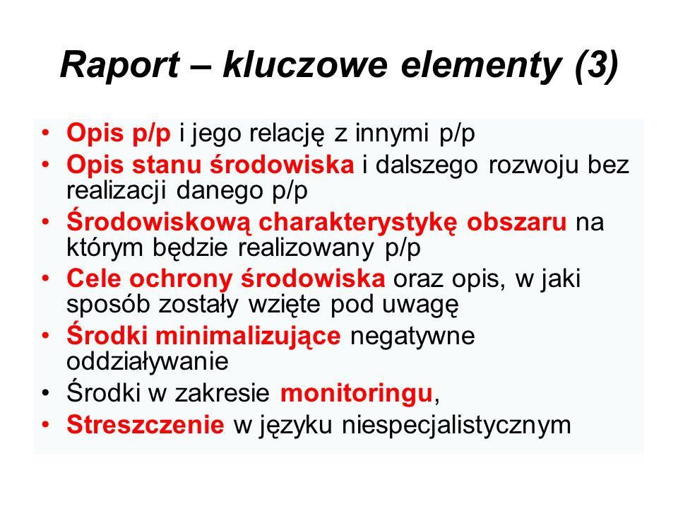 Raport – kluczowe elementy (3)