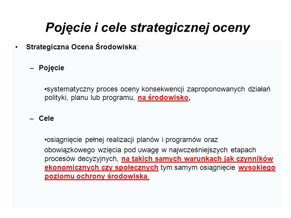 Pojęcie i cele strategicznej oceny