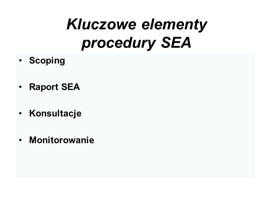 Kluczowe elementy procedury SEA