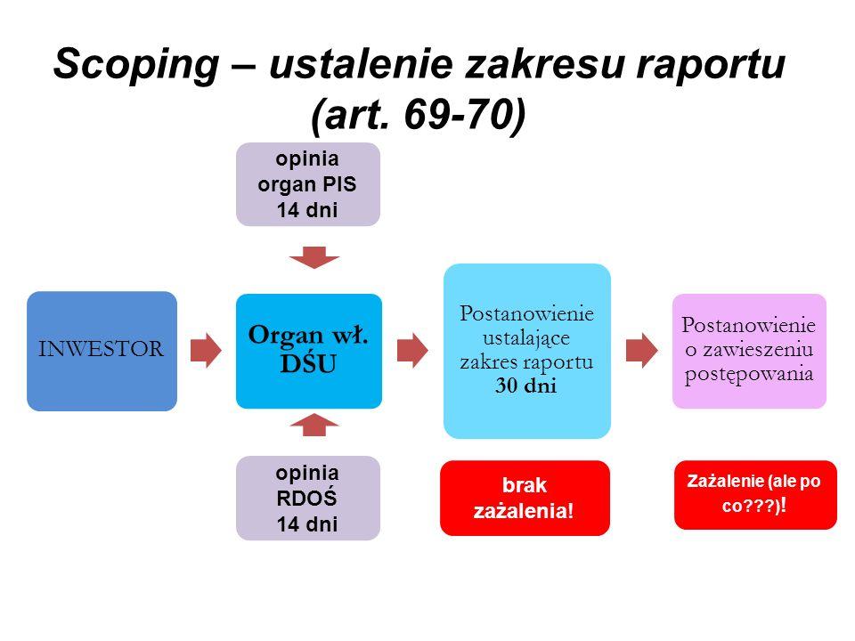 Scoping – ustalenie zakresu raportu (art. 69-70)