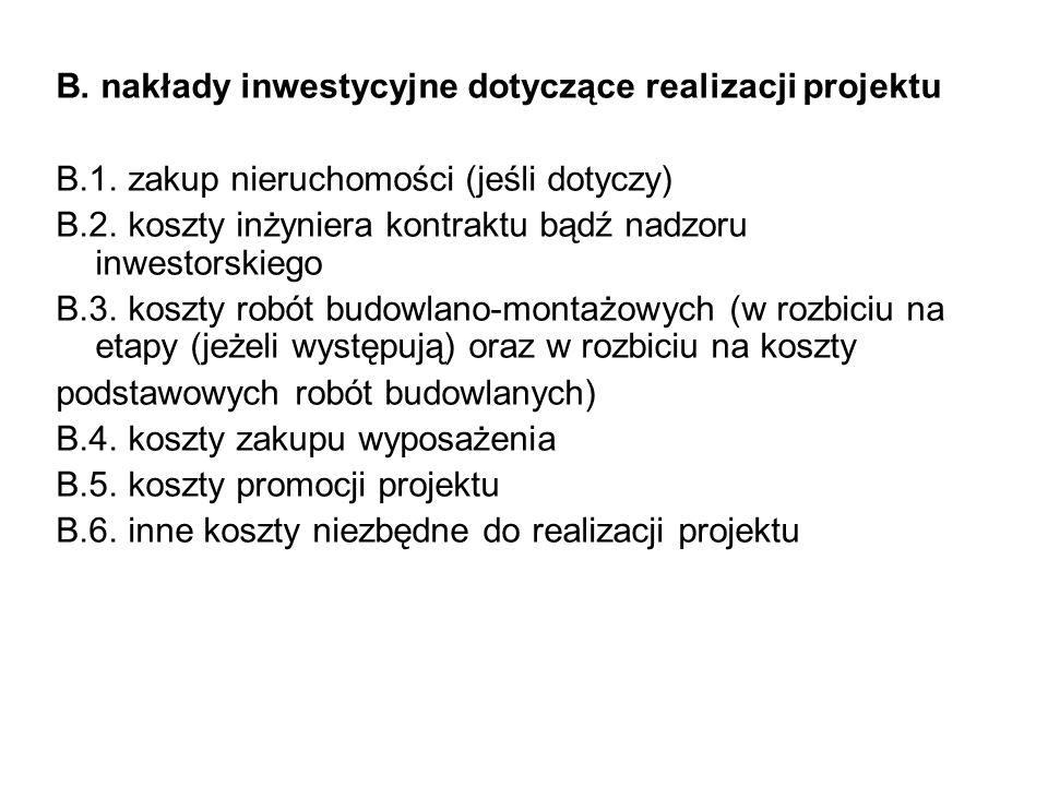 B. nakłady inwestycyjne dotyczące realizacji projektu