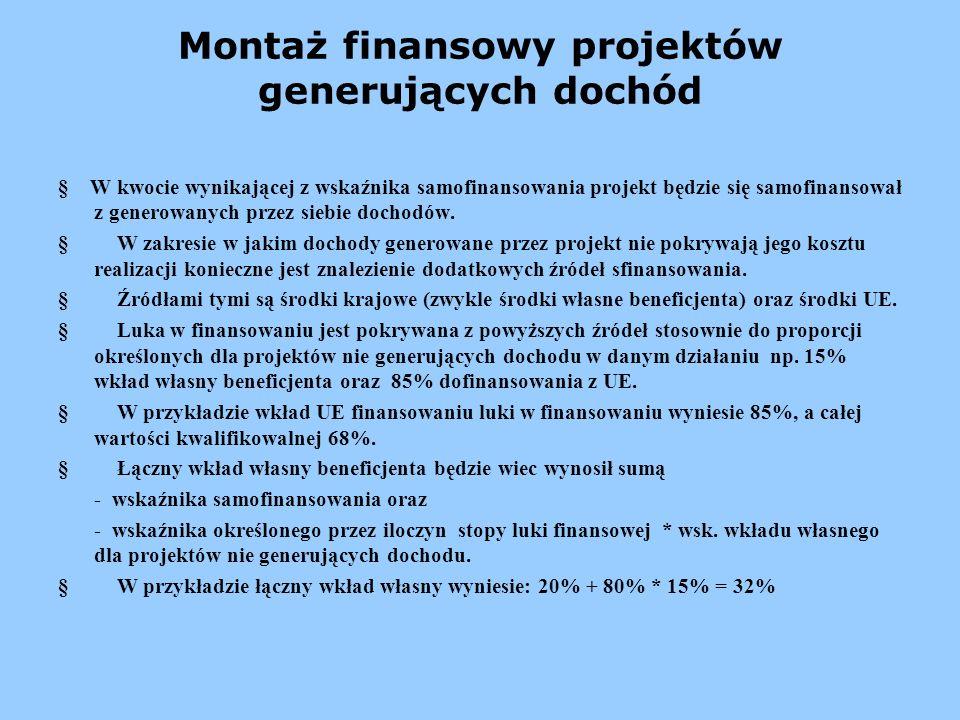 Montaż finansowy projektów generujących dochód