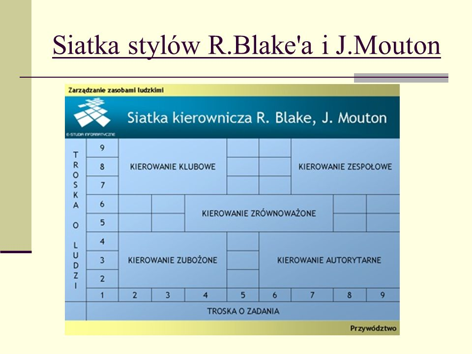 Siatka stylów R.Blake a i J.Mouton