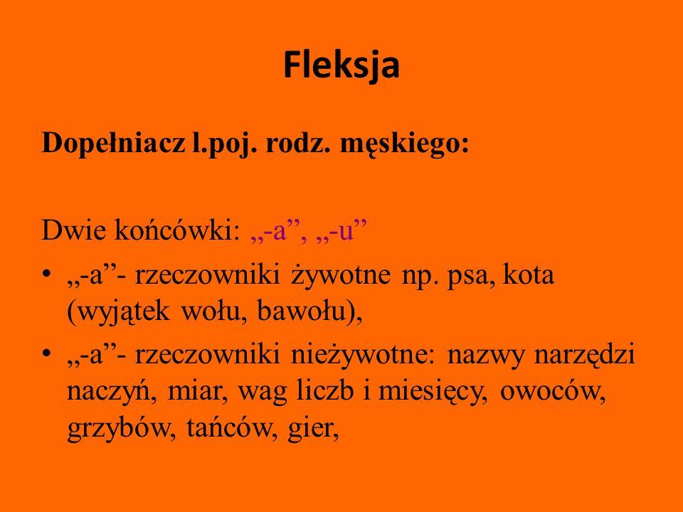 """Fleksja Dopełniacz l.poj. rodz. męskiego: Dwie końcówki: """"-a , """"-u"""
